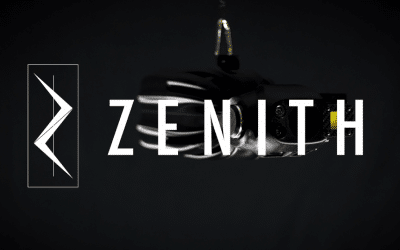 Zenith Inspection System
